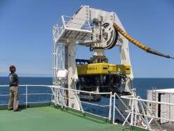 The remotely operated vehicle (ROV) Nereus 3, which was carried onboard the TE Subcom CS Dependable during the primary node installation cruise, was sent down to at the location of the shallow water nodes. As with each installation, tests were performed once the node was on the seafloor to confirm that cables and nodes were functioning as expected. For the shallow water nodes, the ROV was used to bury the cable segments connected to the nodes. Burial operations could take up to 4 or 5 days to complete.  Photo by Cecile Durand