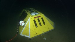 Endurance Oregon Offshore Benthic Experiment Package (BEP) deployed on Dive 1745, July 14 at about 1700 local time. The package contains nine different oceanographic sensors, and was connected by a 50 meter oil-filled cable to the LV01C junction box, allowing it to send near real-time data back to shore. The attached hydrophone (underwater microphone) was deployed a few meters away.  (Photo Credit: NSF/UW/CSSF, Dive R1745, VISIONS '14)